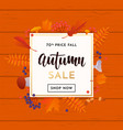 autumn gold sale poster or september shopping vector image vector image