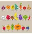 Cartoon Fruits and Vegetables with Facial vector image