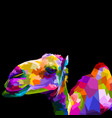 funny portrait an isolated colorful camel vector image