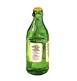 green bottle vector image vector image