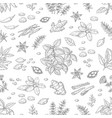 hand drawn spices pattern herbs and vegetables vector image