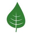 plant leaf flat icon vector image