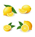 realistic bright yellow lemon with green leaf vector image