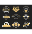 Set of Retro Vintage Badges and Logotypes design vector image