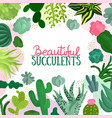 succulents frame vector image vector image