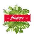 summer sale card vector image vector image