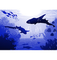 Underwater with Sharks vector image