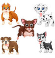 dog cartoon set collection vector image vector image