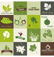 Eco related symbols and icons vector image