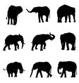 eliphants silhouette set vector image vector image