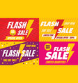 flash sale banner set flat style vector image