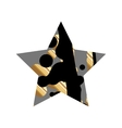 Grunge Black And GoldStar vector image