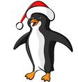 penguin cap color vector image vector image