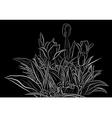 Plant sketch vector image vector image