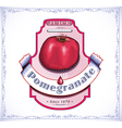 Ripe pomegranate on juice or fruit product label vector image vector image