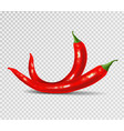 red hot natural chili pepper pod realistic image vector image