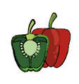 green and red pepper food diet healthy vector image