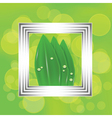 leaves in a white frame vector image vector image
