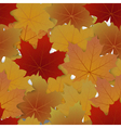 Seamless pattern from autumn maple leaves vector image vector image