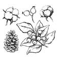 set of hand drawn tradition Christmas vector image
