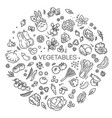 vegetables doodle drawing collection vector image