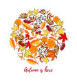 autumn card with hand drawn colored autumn leaves vector image vector image