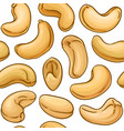 cashew nuts pattern on white background vector image