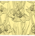 Hand-written seamless pattern with gladiolus vector image vector image