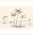 oasis in desert hand drawing palm trees vector image
