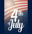 usa the day of independence poster vector image