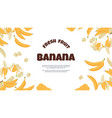 banana banner yellow cartoon tropical fruit vector image vector image