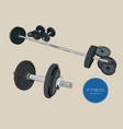 dumbbells barbells and weight fitness sketch vector image