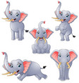 elephant cartoon set collection vector image vector image