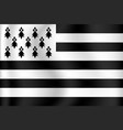 flag brittany vector image vector image