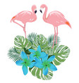 flamingo and flowers vector image vector image