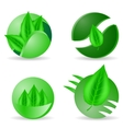 Leaves Icons vector image vector image