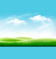 nature summer background with green grass and vector image vector image