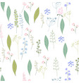 seamless season pattern with contour wild flowers vector image
