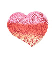 Watercolor heart with capillaries vector image