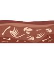 archeology bones animal fossil dirt ground vector image vector image