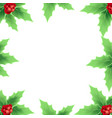 christmas frame with christmas berry vector image