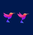 colorful bird logo design ready to use vector image vector image