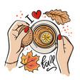 cup autumn tea fall hand drawn vector image
