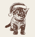 little cat kitten with christmas santa hat vector image