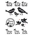 mama bird papa bird baby set vector image