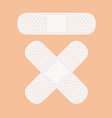 medical white adhesive bandage vector image