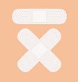medical white adhesive bandage vector image vector image