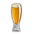 beer glass on white background vector image