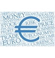 Euro word cloud with symbol of currency vector image vector image