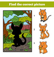 find correct picture kangaroo and background vector image vector image